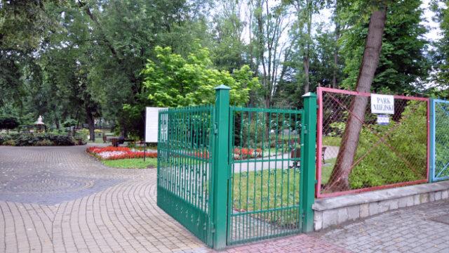 Rozpoczyna się akcja pielęgnacji i konserwacji drzew w Ogródku Jordanowskim w Krośnie